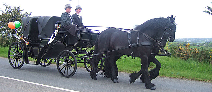 Glenanne Carriage Hire Special Occasions